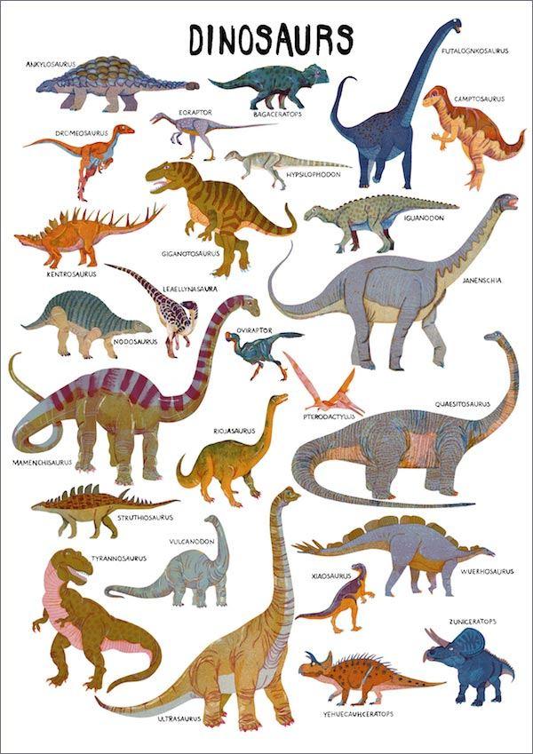 Dinosaur Print (A3)