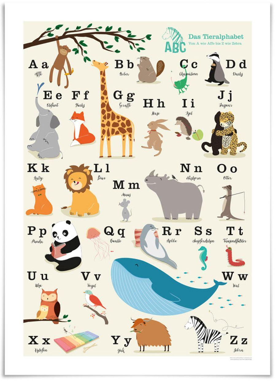ABC Poster (50x70cm)