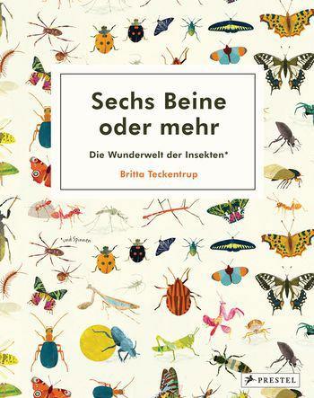 Sechs Beine oder mehr - Die Wunderwelt der Insekten