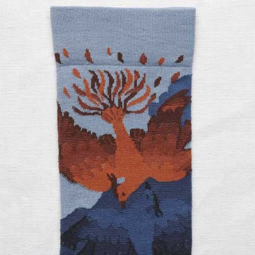 Socks Storm Phoenix