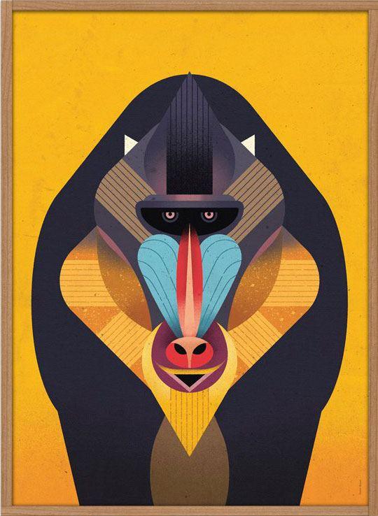 Mandrill Poster (50x70cm)