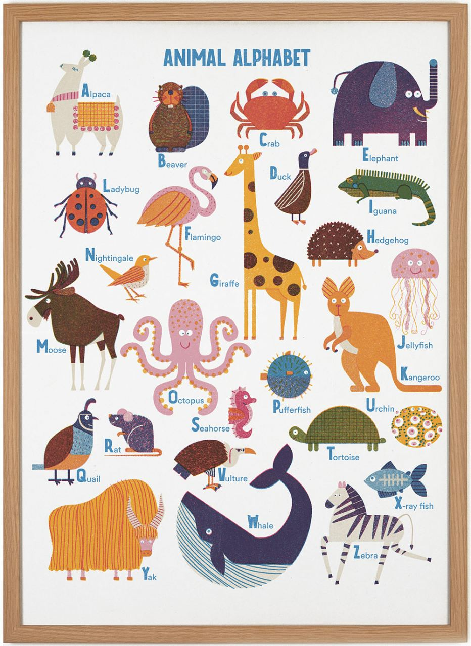 Animal Alphabet by Barbara Dziadosz Poster (50 x 70 cm)