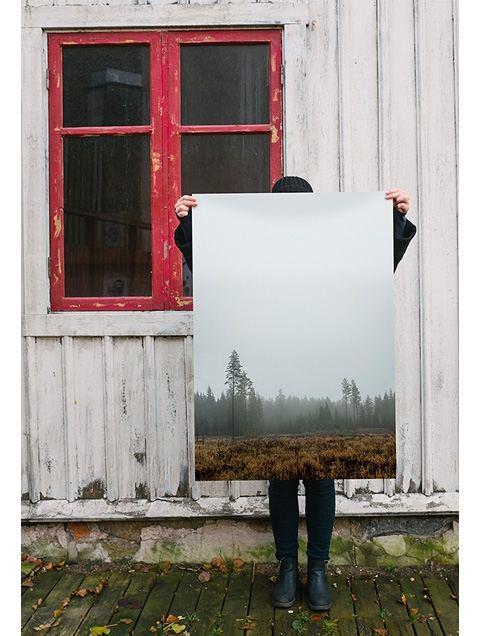 Skog Poster (70x100cm)
