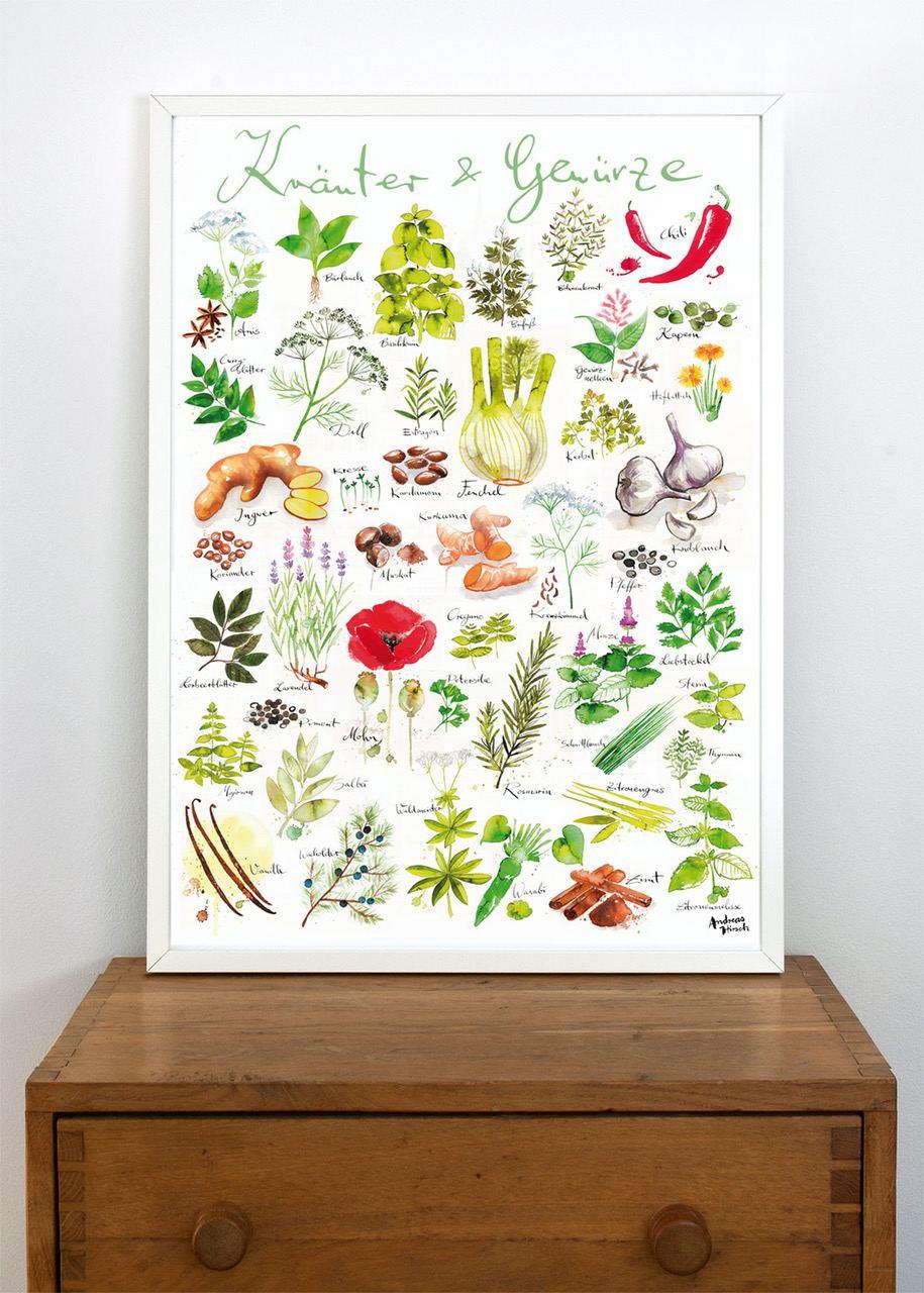 Kräuter / Gewürze Poster (50 x 70 cm)
