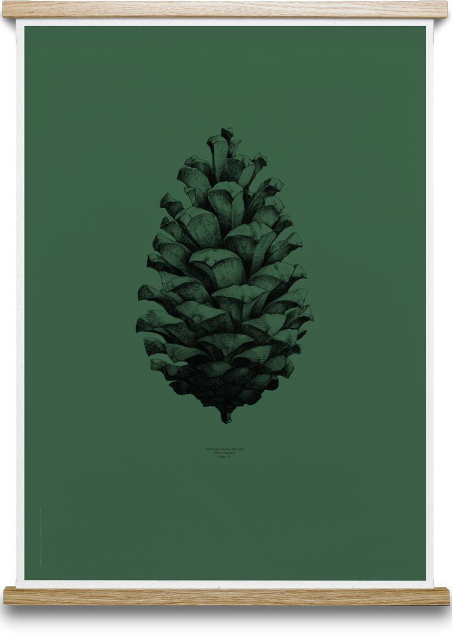 Pine Cone Dark Forest Green