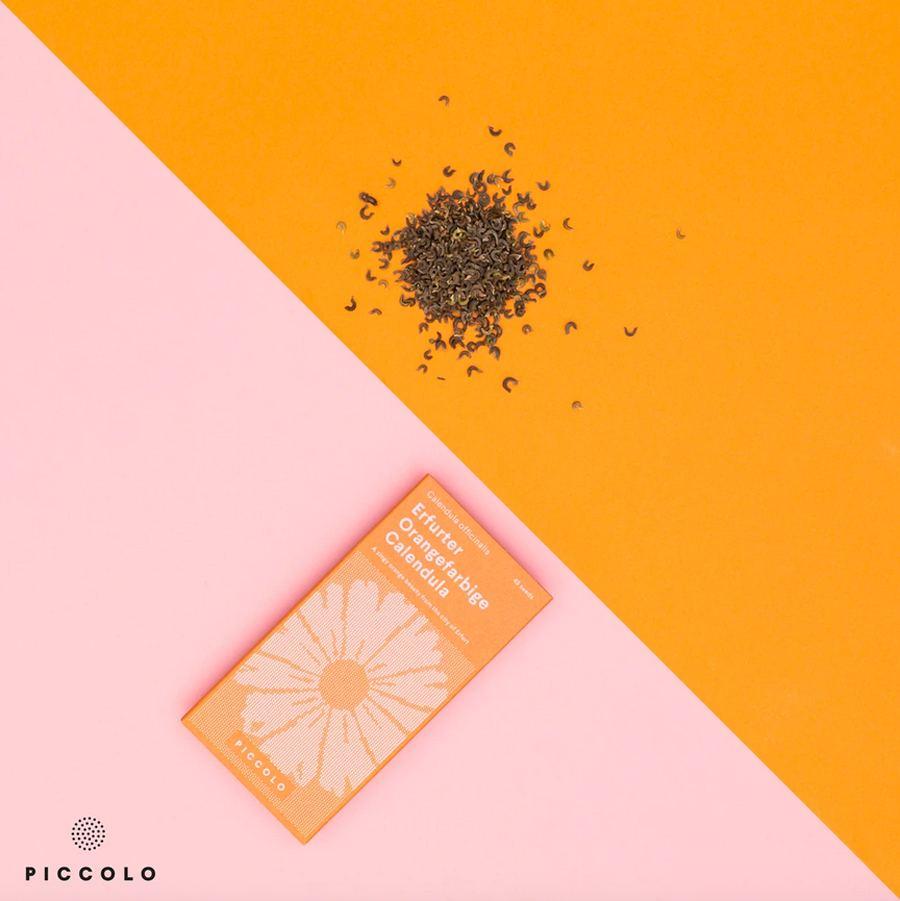 Calendula Erfurter Orangefarbige Saatgut