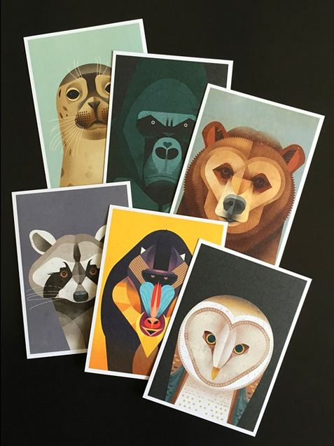 Wildlife Faces Postkartenset