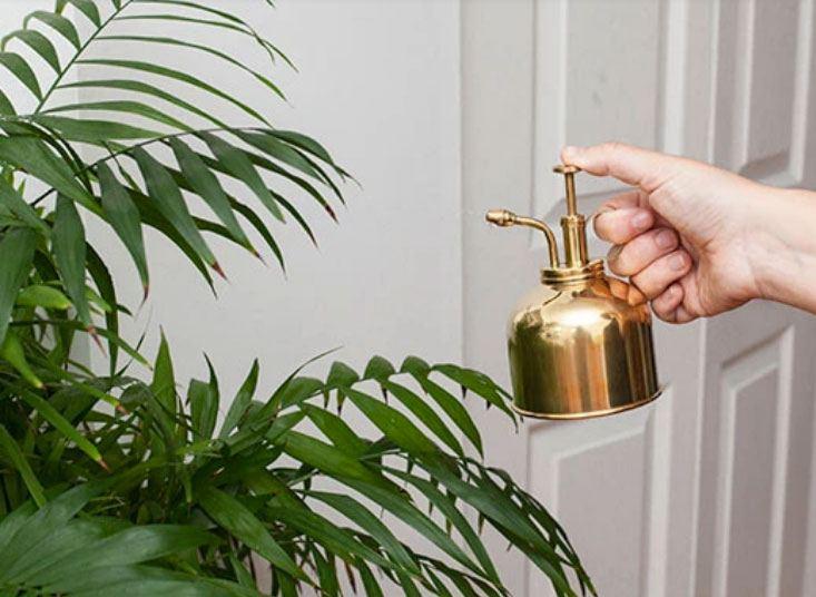 Messing Pflanzensprühflasche