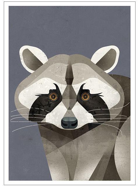 Racoon Postkarte