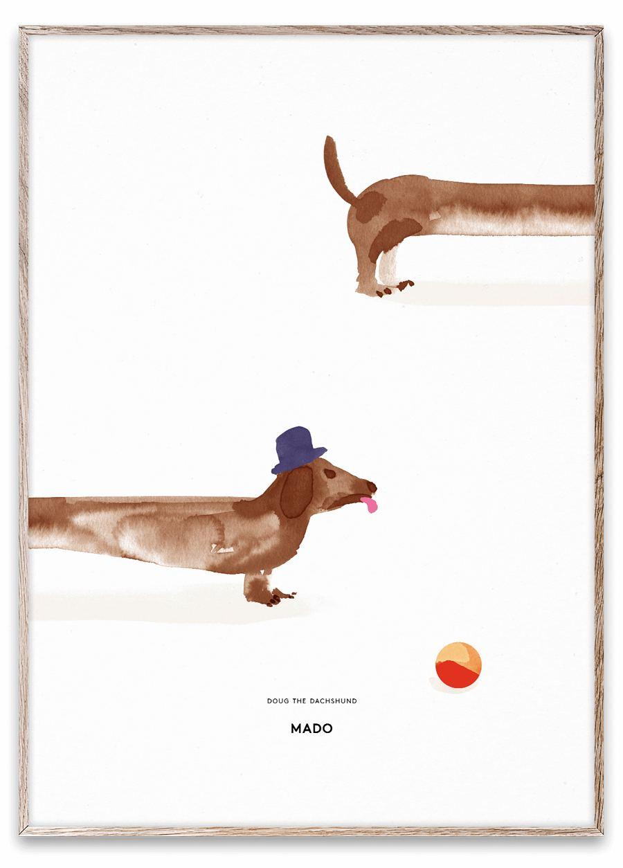 Dough the Dachshund Poster (50x70cm)