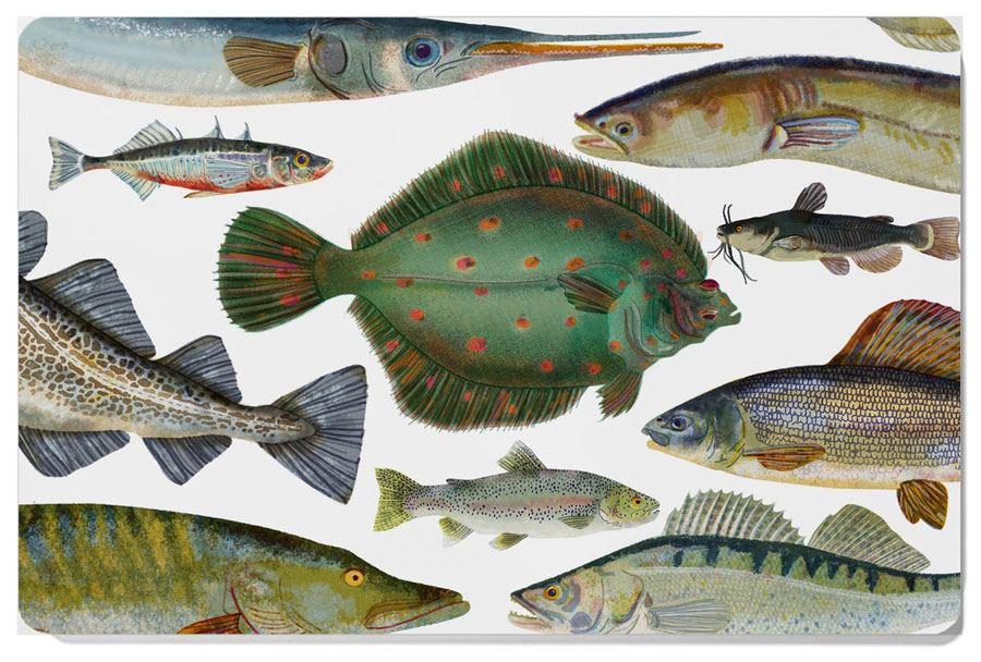 Fische Frühstücksbrett