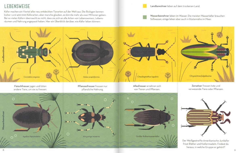 Die große Käferparade