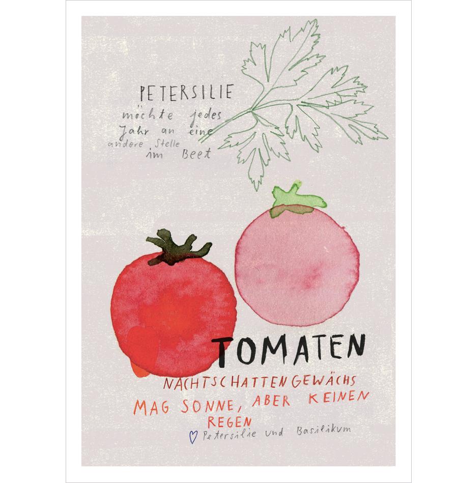 Tomate Postkarte A6
