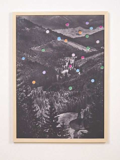 Konfettiwald Poster (50 x 70 cm)