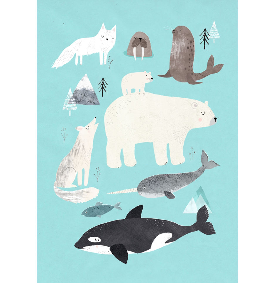 Artic Animals Postkarte