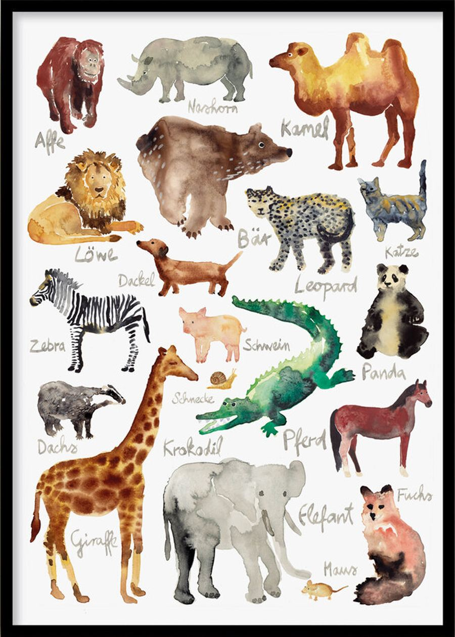 Poster Tiere (30x40cm)