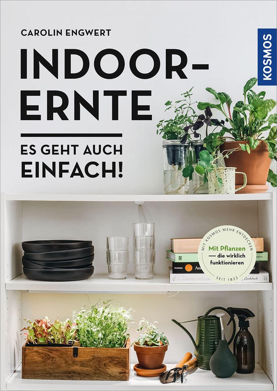 Indoor-Ernte