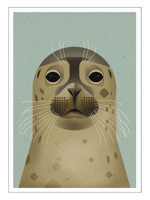 Seal Postkarte