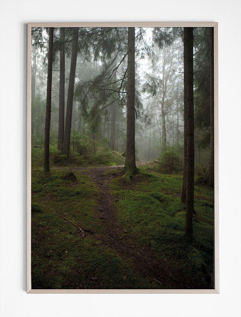 Glänta Poster (50x70cm)