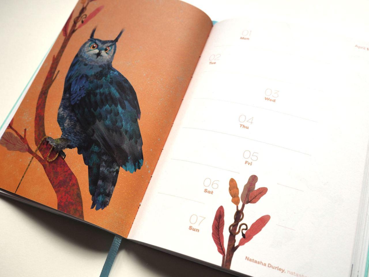 tapir & klotz Taschenkalender 2019