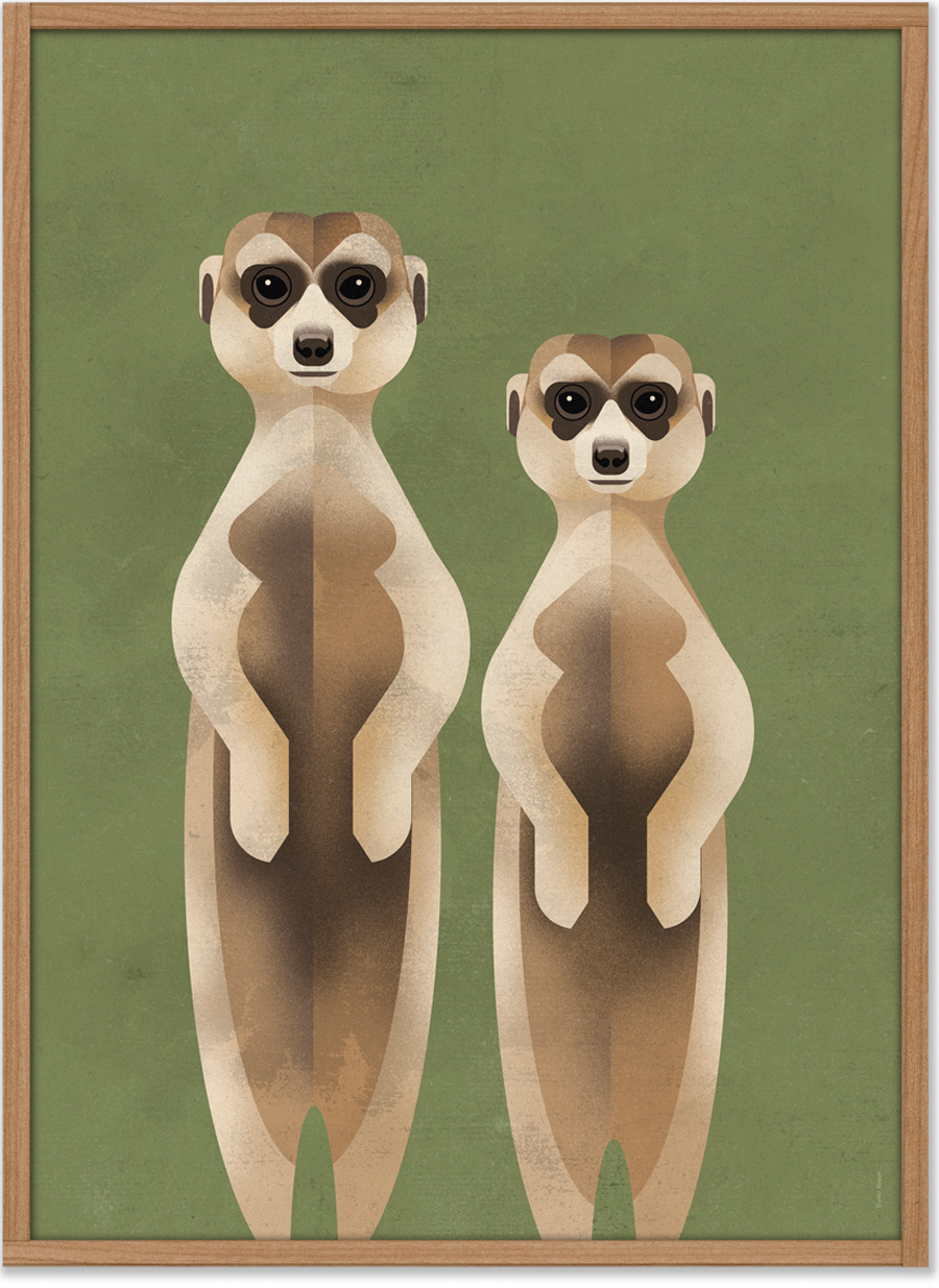 Meerkats Poster (50 x 70 cm)