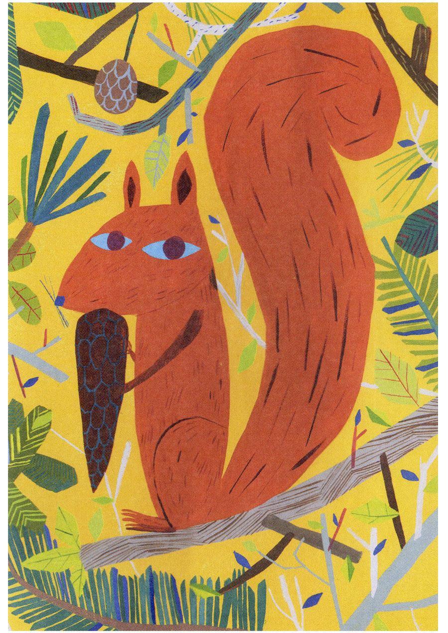 Orava Postkarte