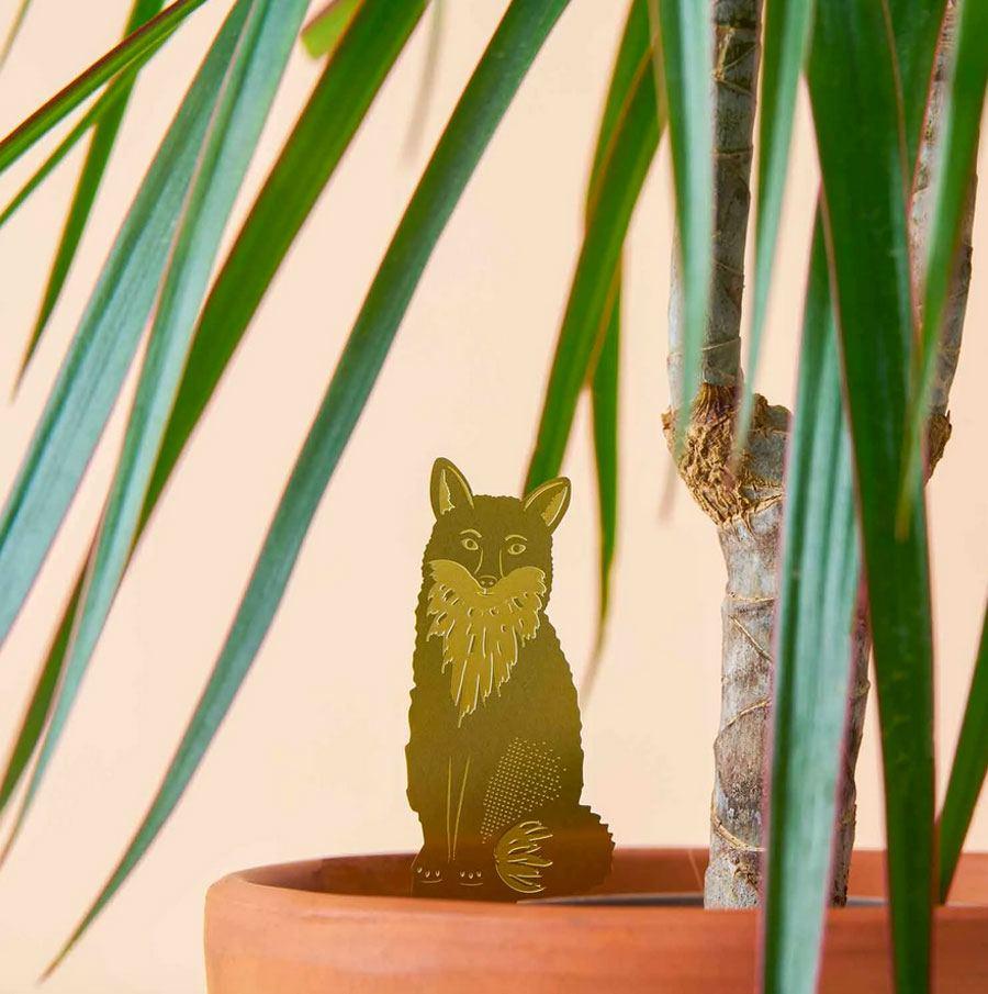 Plant Animal Fuchs