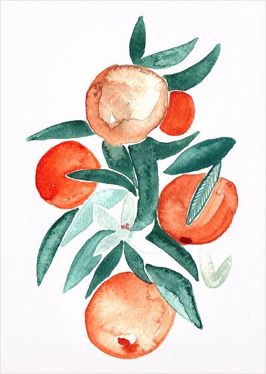 Orangenblüten Postkarte
