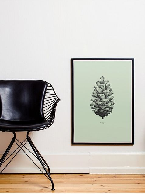 Pine Cone Green Poster