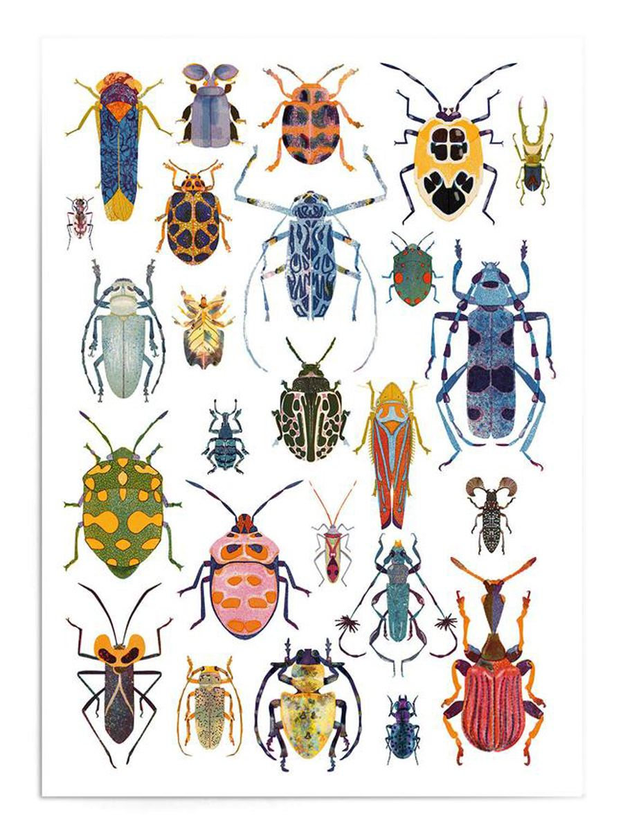 Bugs Print (Din A3)