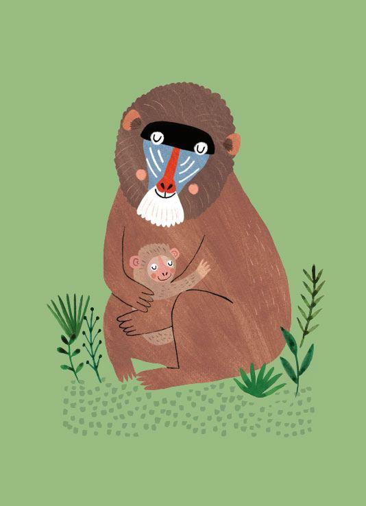 Mandril and Cub Postkarte