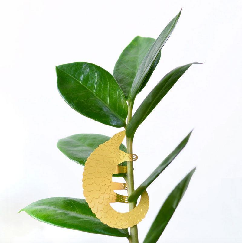 Plant Animal Pangolin