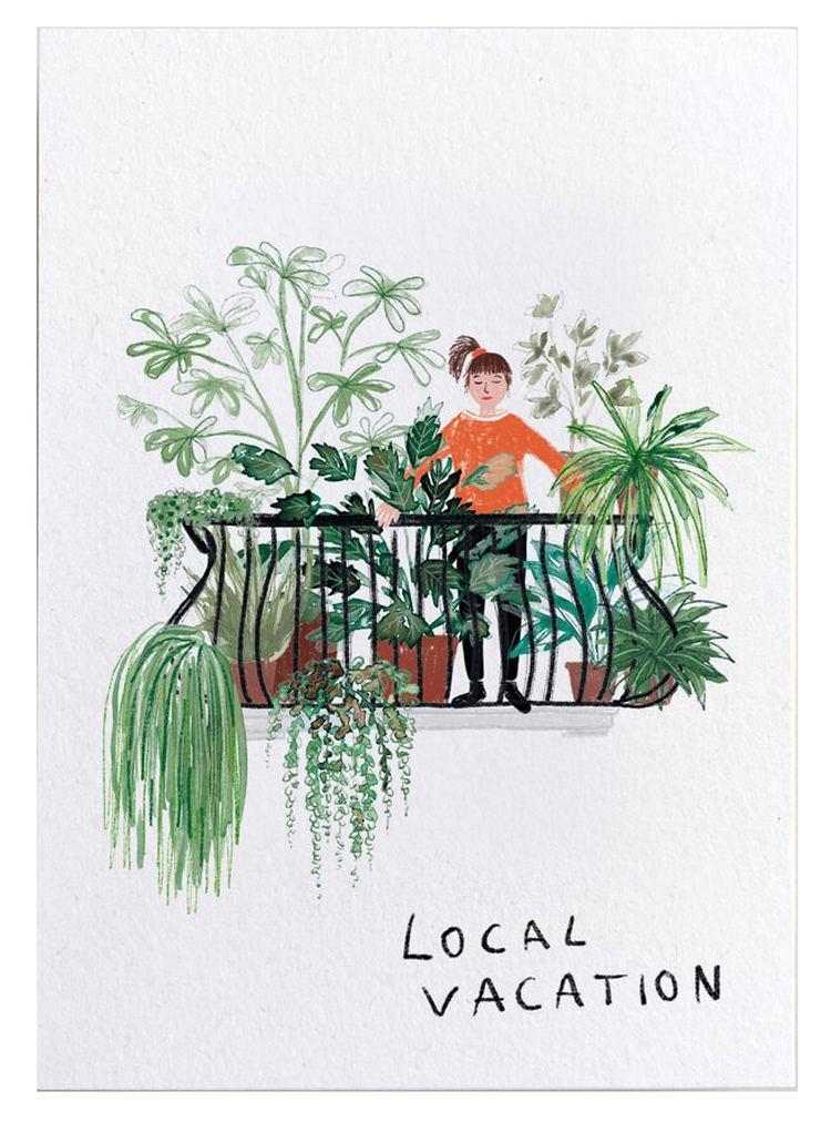Local Vacation Postkarte
