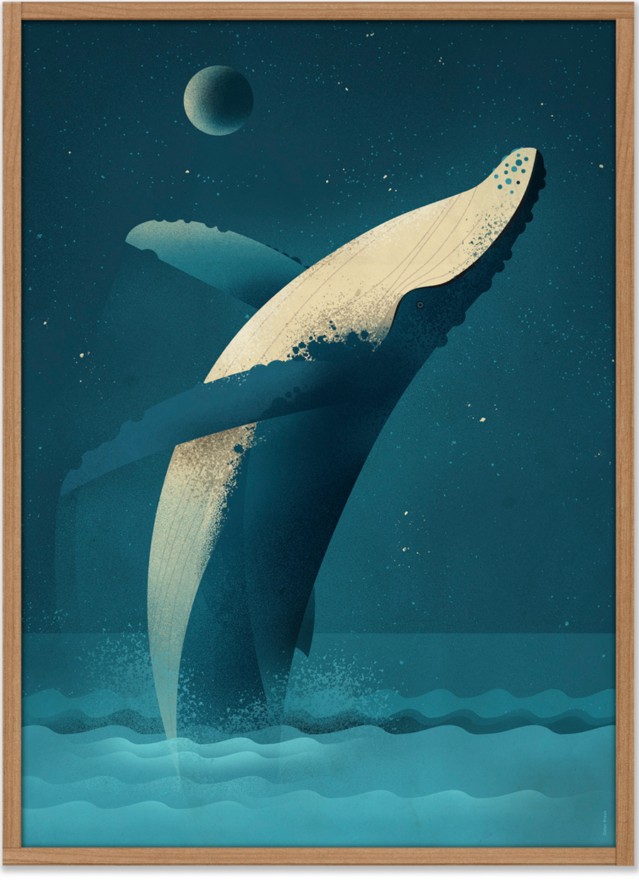 Humpback Whale Poster (50 x 70 cm)
