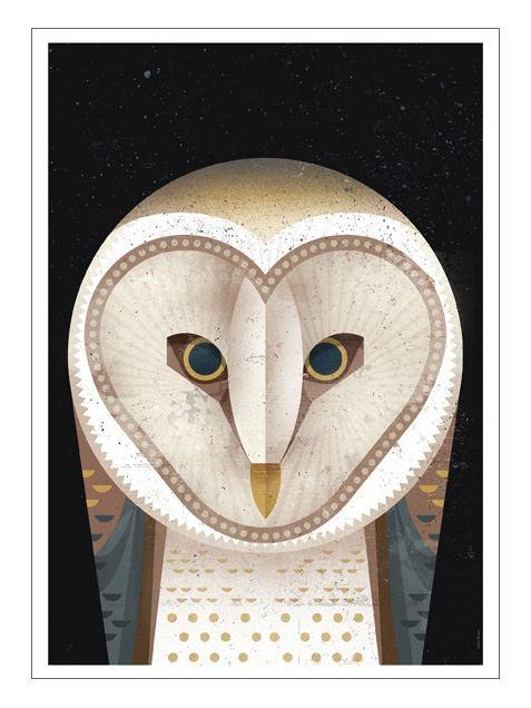 Barn Owl Postkarte