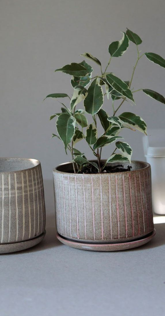 Pot carved with saucer - Rosé / Gray