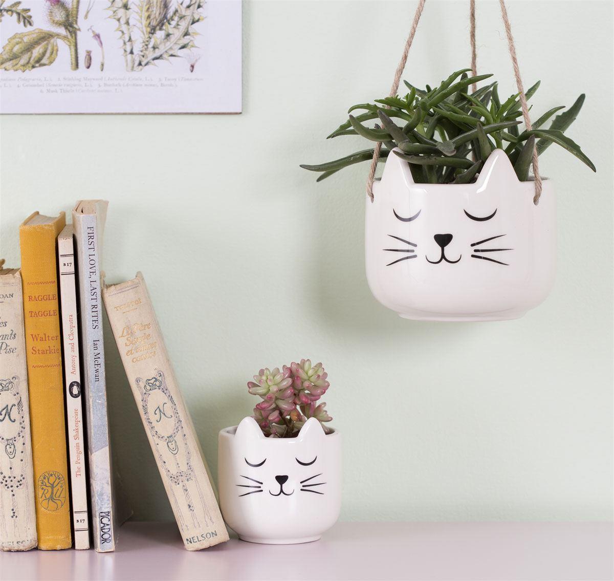 Cat's Whiskers Mini Übertopf