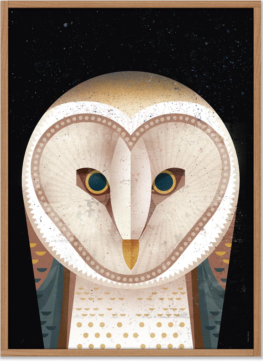 Barn Owl Poster (50 x 70 cm)