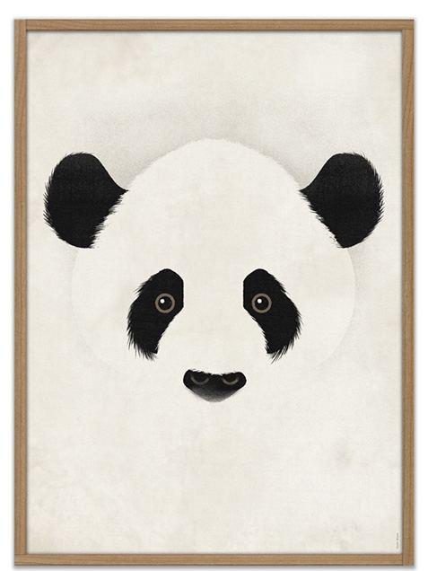 Giant Panda Poster (50 x 70 cm)