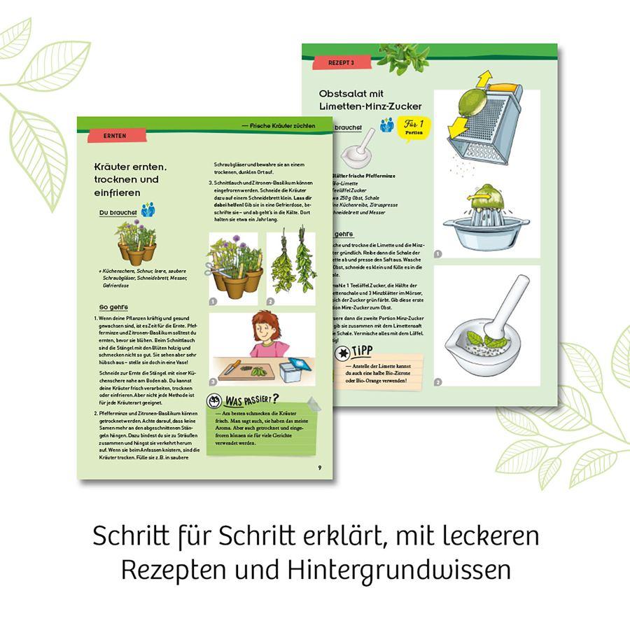Kräuter-Garten Experimentierkasten
