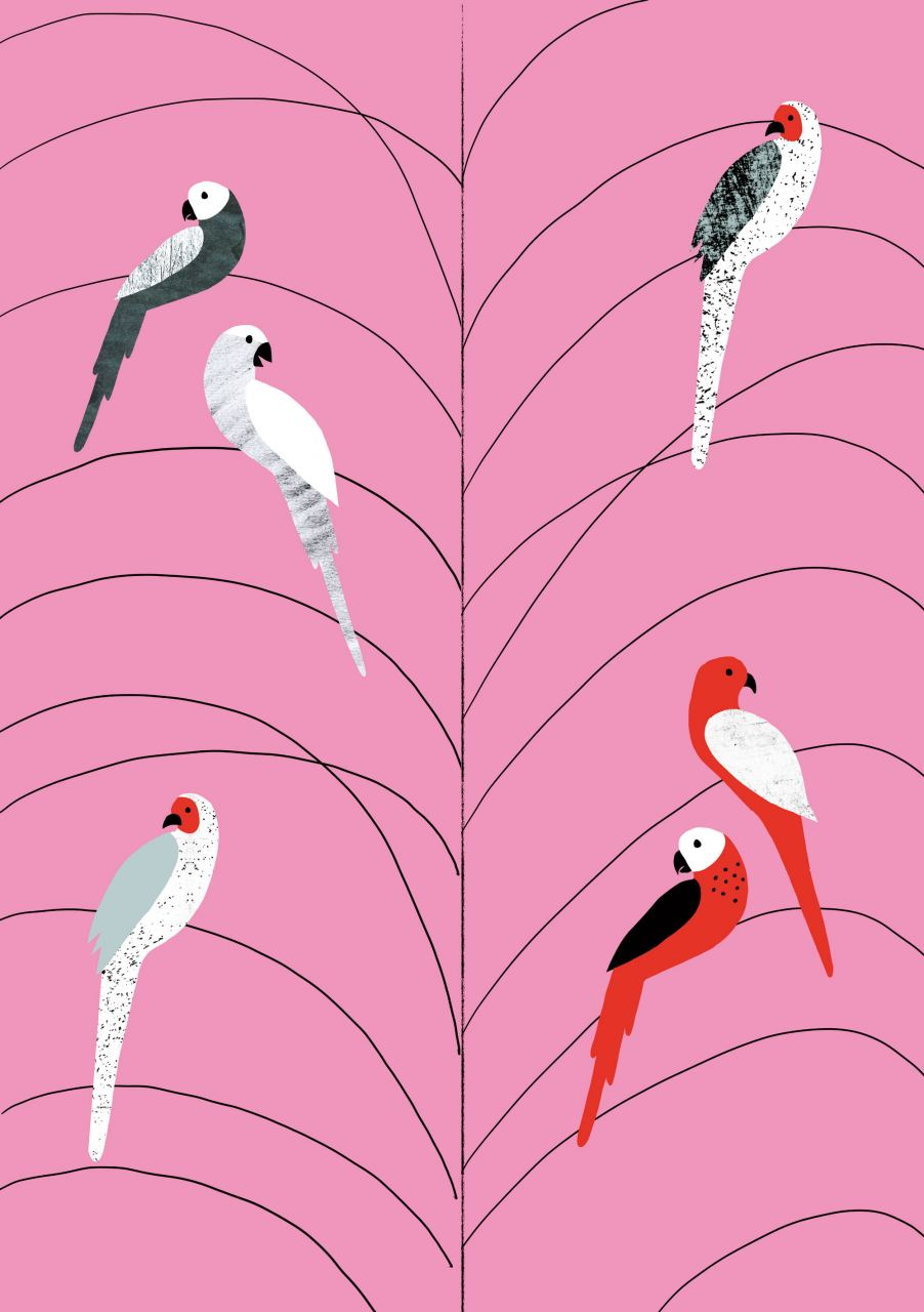 Birds on Branch Pink Poster (A3)