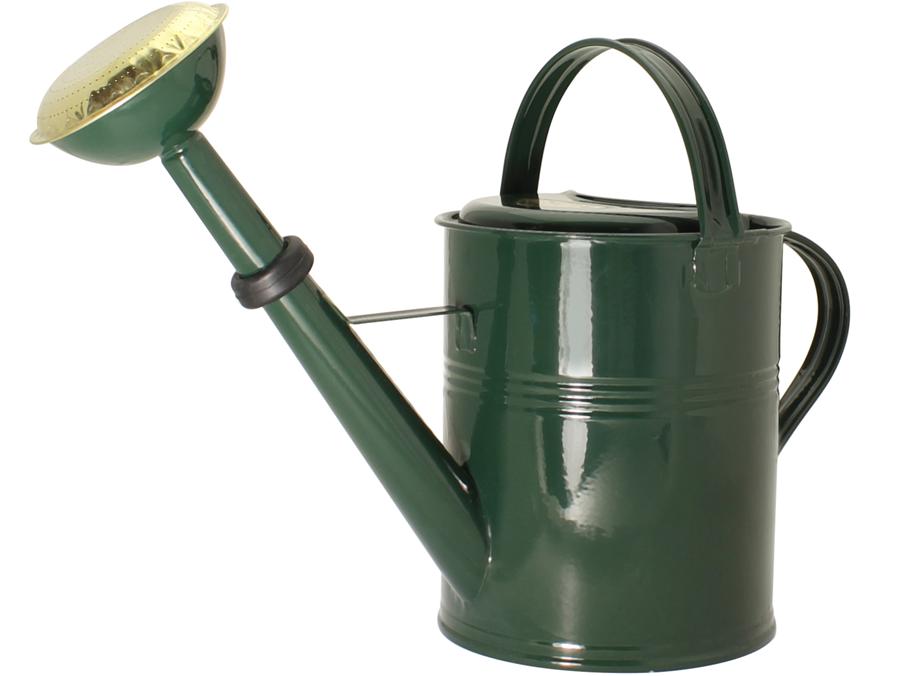 Gartengießkanne Grün