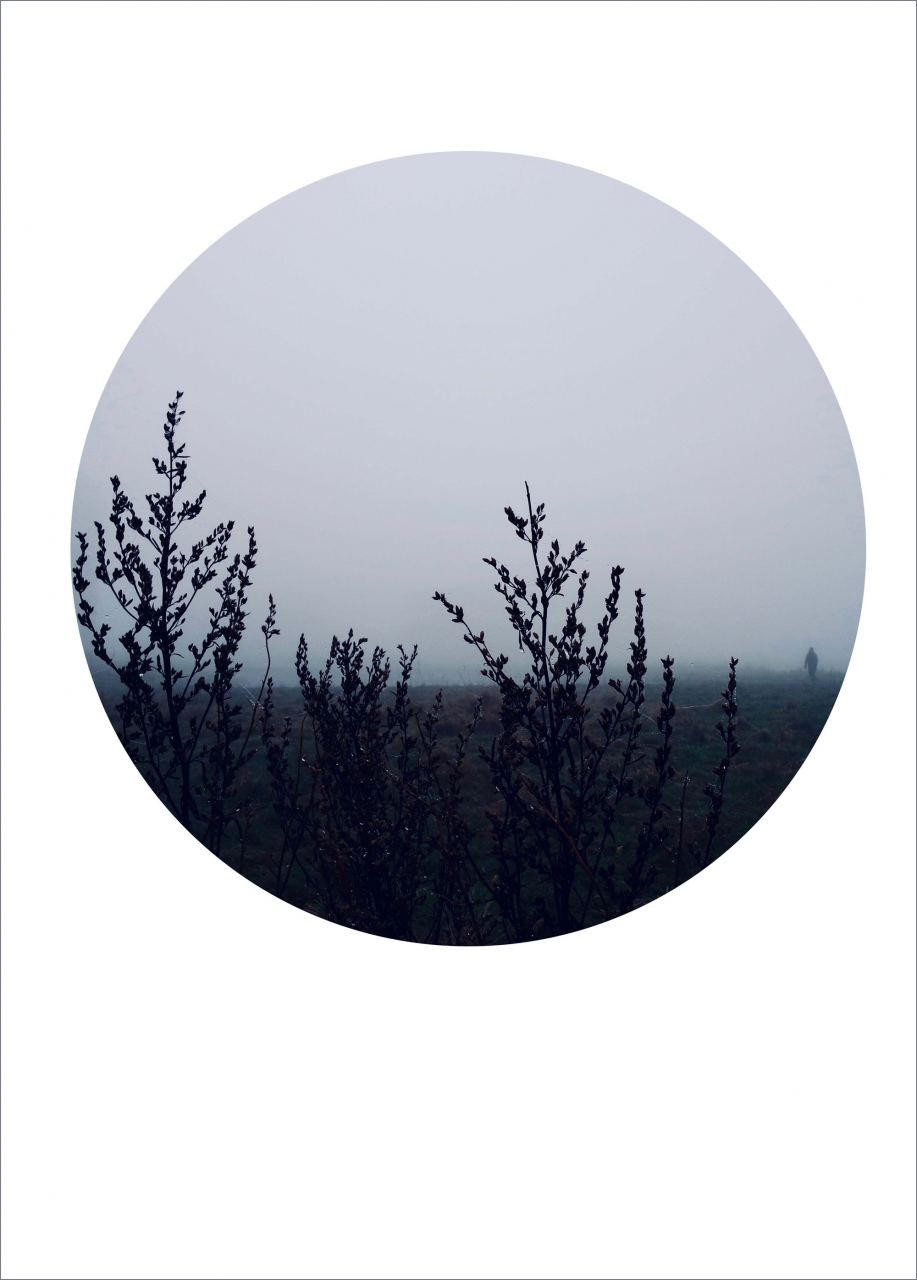 Fog Day Poster (50x70cm)