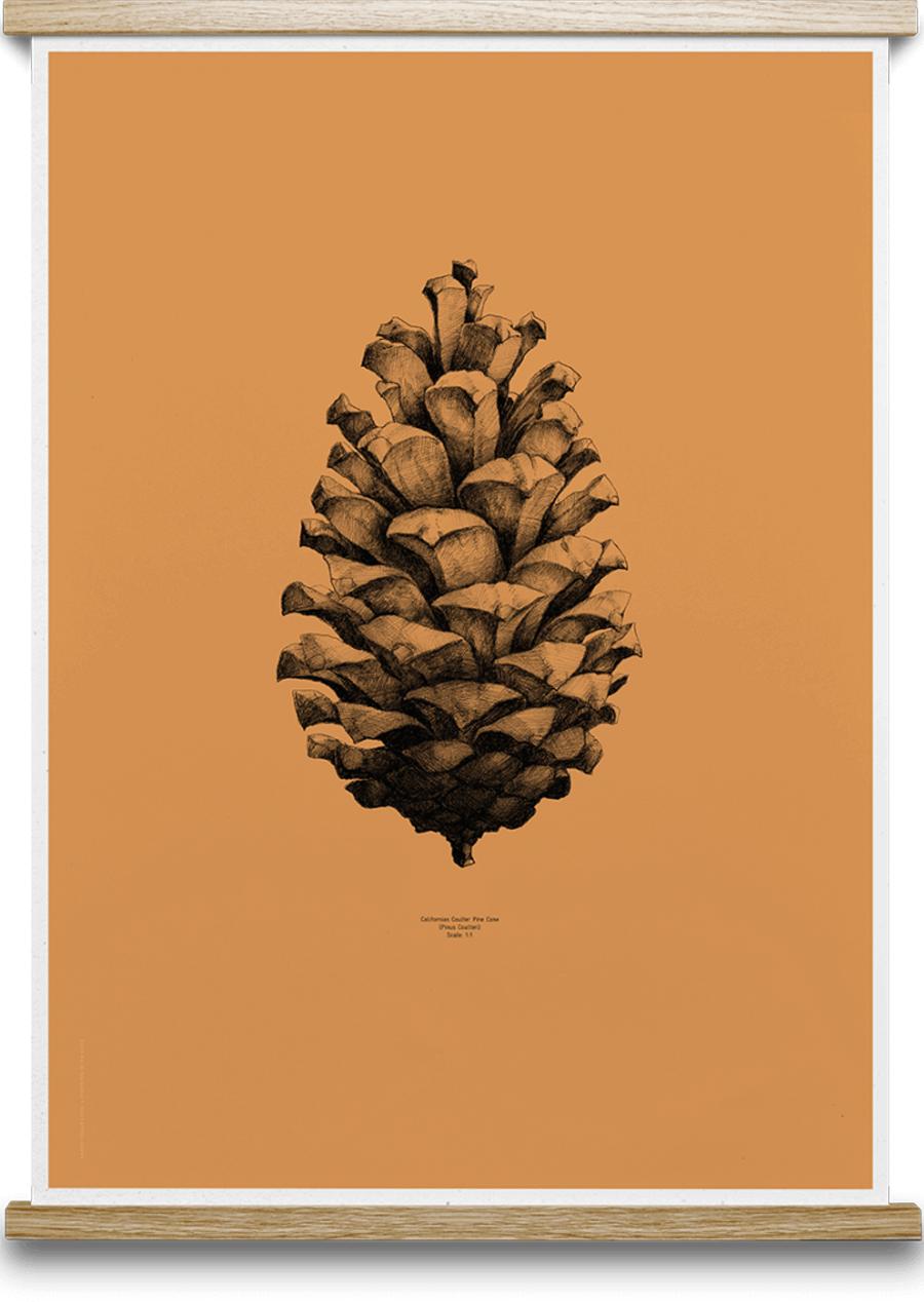 Pine Cone Forest Orange Poster (50x70cm)