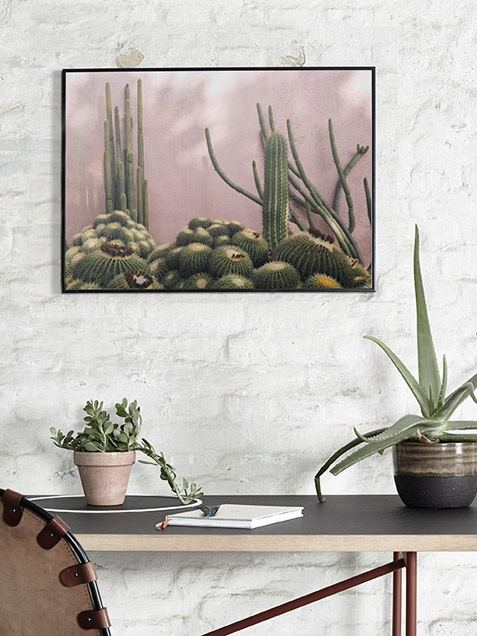 Plants on Pink Poster (50 x 70 cm)