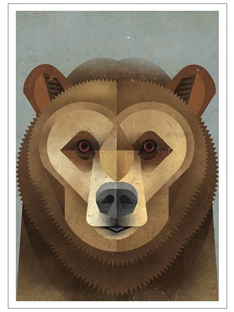 Kodiak Bear Postkarte