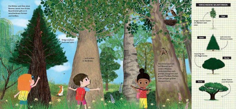 Schau dich um in der Natur - Der Wald